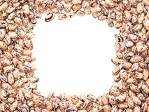 Beans. Mottled beans, laid out in the form of a frame. On a white background Stock Photo