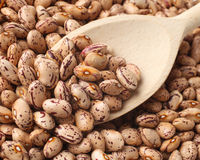 Beans. Macro shoot of beans texture Royalty Free Stock Photography