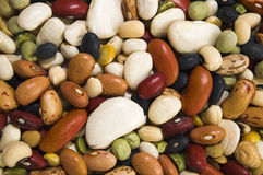 Beans. Mix of colorfull beans background Stock Images