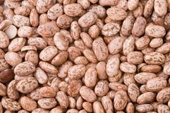 Beans. Close-up of raw dried beans Royalty Free Stock Image