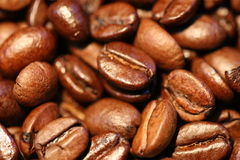 Beans. Arabica coffee-beans stock images