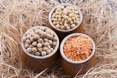 Beans aand Seeds Stock Image