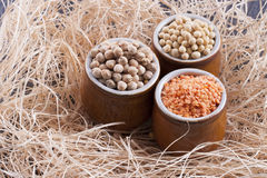 Beans aand Seeds Stock Photography