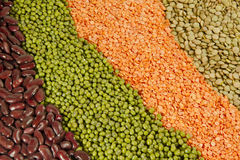 Beans assortment Stock Images