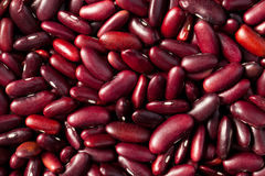 Beans background Royalty Free Stock Photo