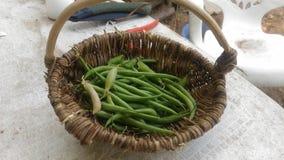Beans in a basket stock photos