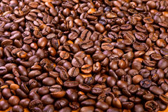 Beans of black arabic coffee Royalty Free Stock Photography