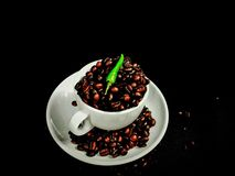 Beans brown aroma black cup ceramic. Coffee breakfast brown caffeine greenpepper Royalty Free Stock Photography