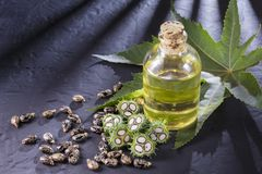 Beans and castor oil. On the black table royalty free stock photography