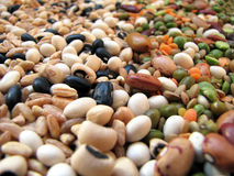 Beans and cereal. A closeup photo of colorful beans and cereal Stock Photo
