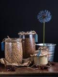 Beans  chickpeas flax sesame. Against a dark background Stock Photos