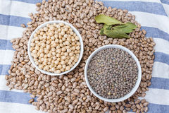 Beans, chickpeas and lentils in bowls Stock Photos