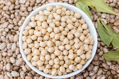 Beans and chickpeas in porcelain bowl Stock Image
