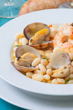 Beans and clams Stock Images