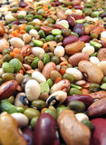 Beans closeup. A closeup photo of colorful beans and cereals Royalty Free Stock Image