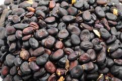 Beans closeup Royalty Free Stock Photos