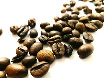 Beans coffee arabica aroma bean brown closeup fresh. Beans coffee arabica aroma bean brown closeup Royalty Free Stock Photography