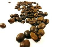Beans coffee arabica aroma bean brown closeup fresh. Beans coffee arabica aroma bean brown closeup Stock Photo