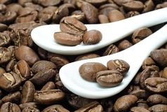 Beans of coffee in ceramic spoons on roasted coffee background Stock Image