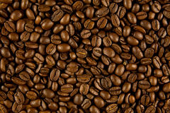 Beans of coffee  drink concept breakfast Royalty Free Stock Photo