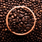 Beans of coffee Royalty Free Stock Images
