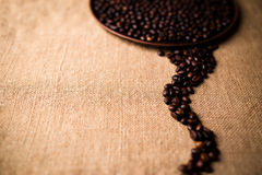 Beans of coffee Stock Images