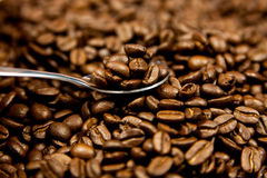 Beans of coffee and spoon drink concept breakfast Royalty Free Stock Photography