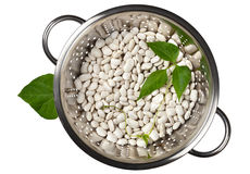 Beans in a colander Royalty Free Stock Image