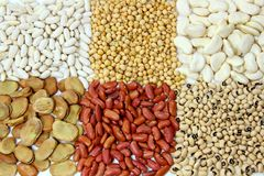 Beans Family. Group of raw healthy beans Stock Image