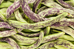 Beans flat Stock Images