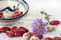 Beans and flower stock images