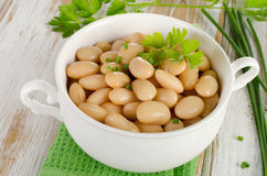 Beans with fresh herbs   on  wooden table. Royalty Free Stock Photo