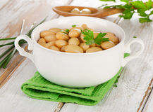 Beans  with fresh herbs  on a  wooden table . Stock Photography