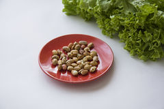 Beans germs. Germs in a plate, healthy live food photo with copy space for text Stock Image