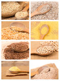 Beans and Grains Collage Stock Image