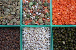 Beans and grains Royalty Free Stock Photos