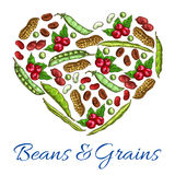 Beans and grains in vector heart shape vector illustration