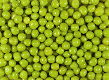 Beans of green peas Stock Image