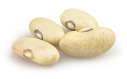 Beans isolated Stock Image