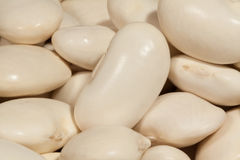 Beans legume macro Royalty Free Stock Photos