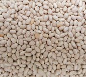 Beans legumes vegetables Stock Photos