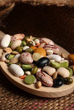 Beans and lentil on wooden spoon Stock Image