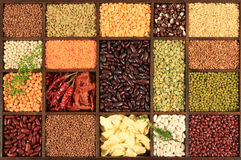 Beans and lentils. stock photography