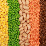 Beans, lentils, peas and corn Royalty Free Stock Photography