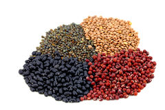Beans and lentils pulse on white Royalty Free Stock Images