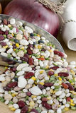 Beans & Lentils in Scoop. A mix of dried beans and lentils, including dried peas, green and yellow, small red, pink and white, northern, pinto, kidney, navy Royalty Free Stock Photo