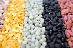 Beans Royalty Free Stock Photo