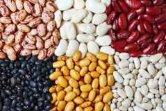 Beans mixture. Mixture of six diferent type of colorful beans Stock Images