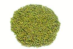 Beans mung Stock Image