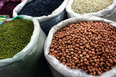 Beans and nuts. Different types of beans and nuts Stock Images